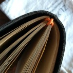 This shows how nicely the ZLYC journals use elastic to hold the inserts. This is the Passport journal.